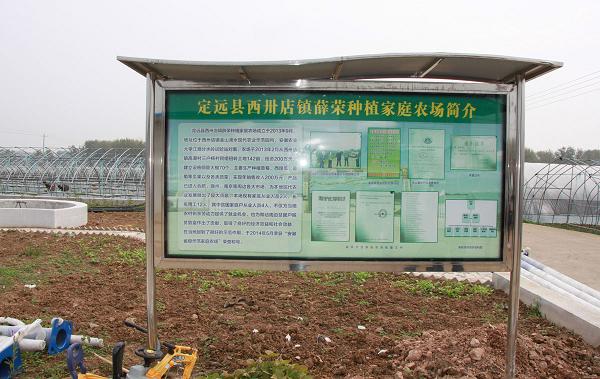 安徽定远:聚焦乡村振兴战略谱写绿色发展新篇章 图18